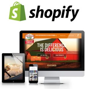 Shopify stores by Bluefish